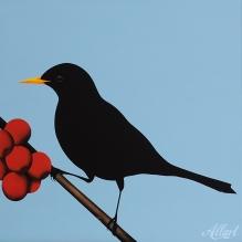 03-jeroen-allart-100x100-2011