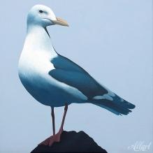 11-jeroen-allart-50x50-2012