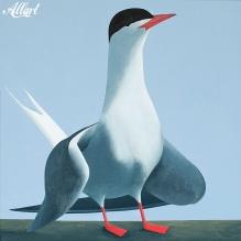 15-jeroen-allart-50x50-2011