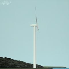 17-jeroen-allart-100x100-2012