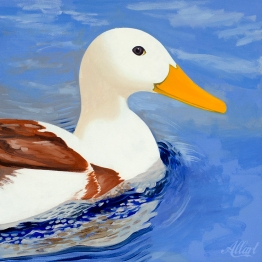 duck-1-40x40-oil-2018-allart