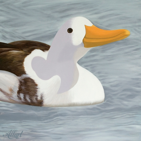 DUCK-70x70-oil-2018-allart