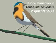 jeroen-allart-museum-belvedere-oranjewoud